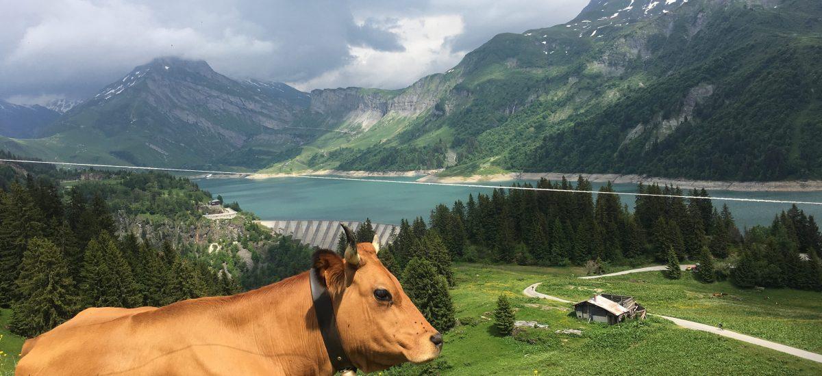 Cormet De Roselend via Col du Pré – French Alps